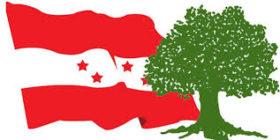 मुलुक बचाउन कांग्रेस बीपीकै बाटोमा हिड्नुपर्छ ।