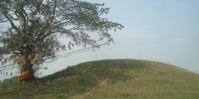 रामग्राम स्तूप क्षेत्रको जियो फिजिक्स सर्भे सकियो